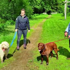 Hondenliefhebbers in Albergen volgen Tubbergs initiatief voor hondenspeelveldje