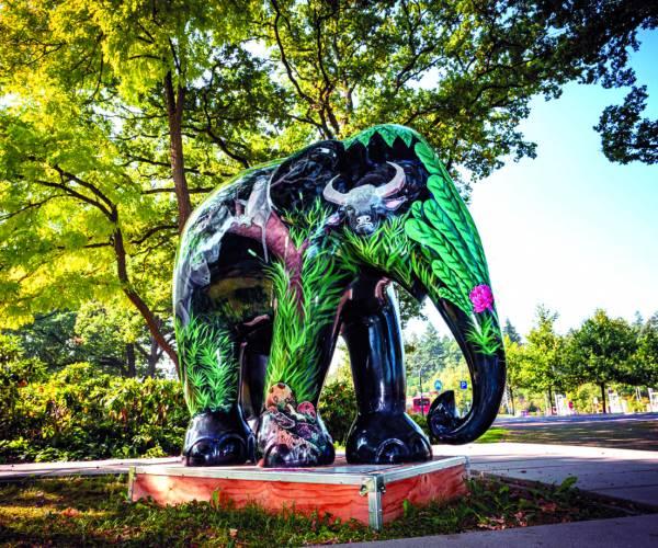 Wereldtentoonstelling Elephant Parade strijkt neer in Noordoost-Twente