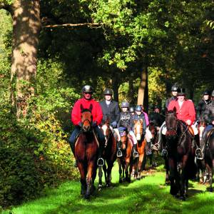 Sint-Hubertusrit, mooie traditie te paard