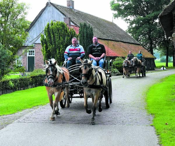 Mooie routes, gezelligheid en liefde voor de paardensport  tekenen 11e Tubbergse Men- en Ruiterdagen